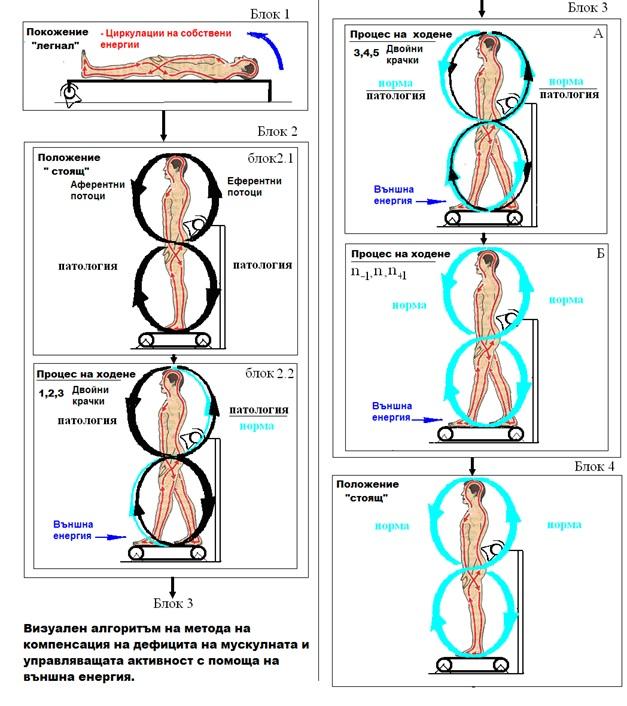 Метод за лечение на ЦП, травгми на гръбначният мозък и гръбначния стълб